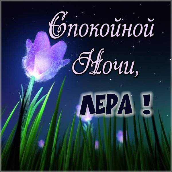 Красивая картинка спокойной ночи Лера - скачать бесплатно на otkrytkivsem.ru