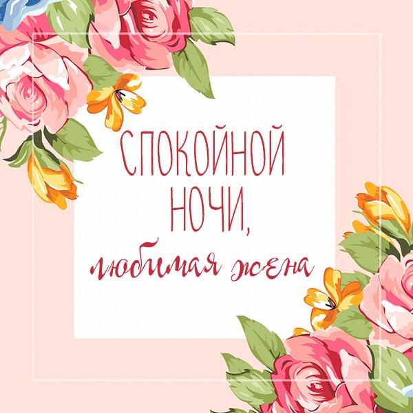 Красивая картинка спокойной ночи любимой жене - скачать бесплатно на otkrytkivsem.ru