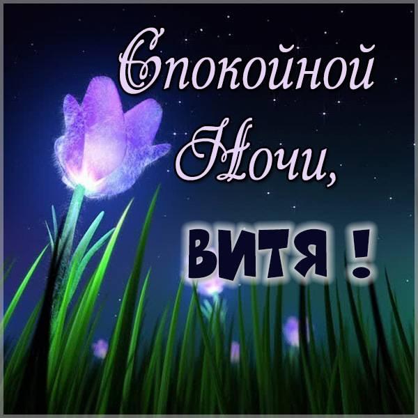 Красивая картинка спокойной ночи Витя - скачать бесплатно на otkrytkivsem.ru