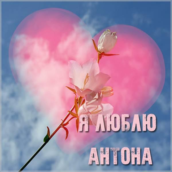 Красивая картинка я люблю Антона - скачать бесплатно на otkrytkivsem.ru