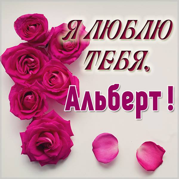 Красивая картинка я люблю тебя Альберт - скачать бесплатно на otkrytkivsem.ru