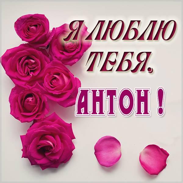 Красивая картинка я люблю тебя Антон - скачать бесплатно на otkrytkivsem.ru