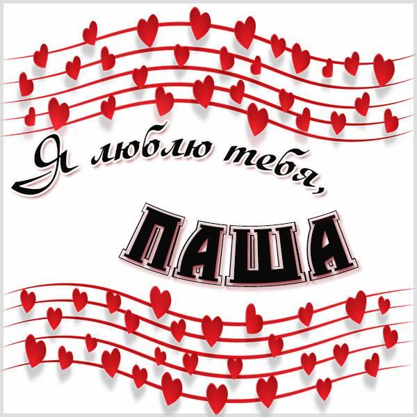 Красивая картинка я люблю тебя Паша - скачать бесплатно на otkrytkivsem.ru