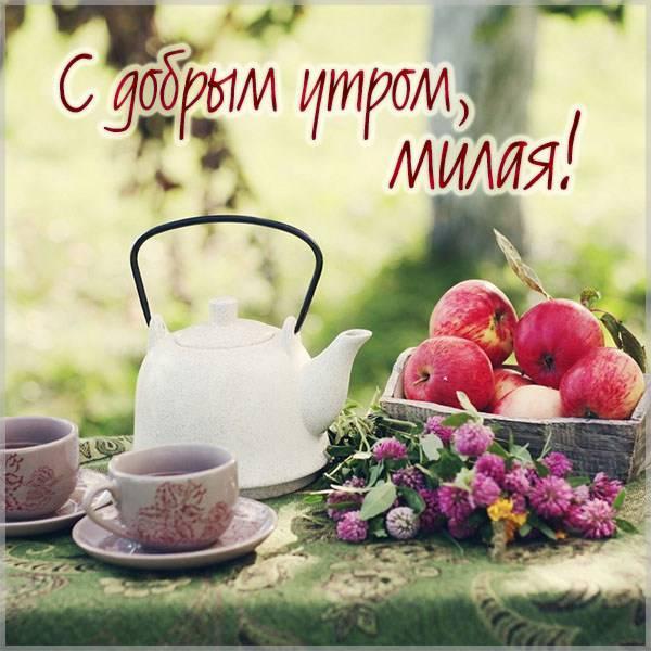 Красивая летняя открытка с добрым утром девушке - скачать бесплатно на otkrytkivsem.ru
