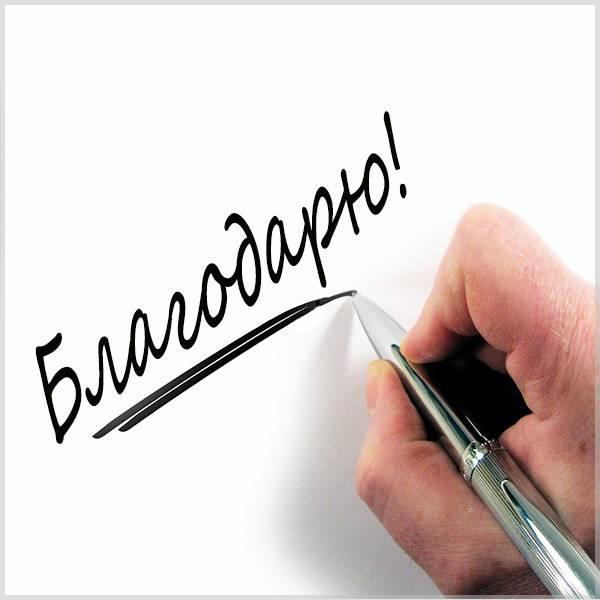 Красивая открытка благодарю - скачать бесплатно на otkrytkivsem.ru