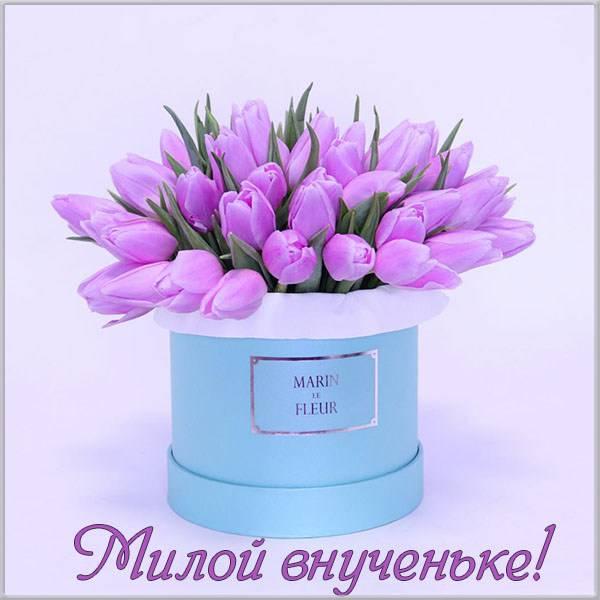 Красивая открытка для внучек бесплатно - скачать бесплатно на otkrytkivsem.ru