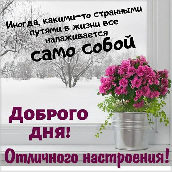 Красивая открытка доброго дня и отличного настроения - скачать бесплатно на otkrytkivsem.ru