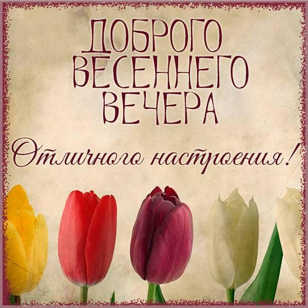 Красивая открытка доброго весеннего вечера - скачать бесплатно на otkrytkivsem.ru