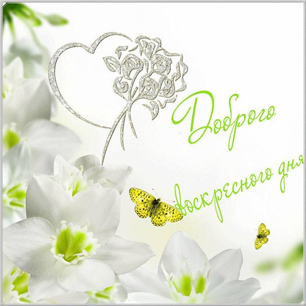 Красивая открытка доброго воскресного дня - скачать бесплатно на otkrytkivsem.ru