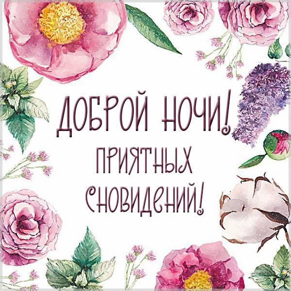 Красивая открытка доброй ночи приятных сновидений - скачать бесплатно на otkrytkivsem.ru