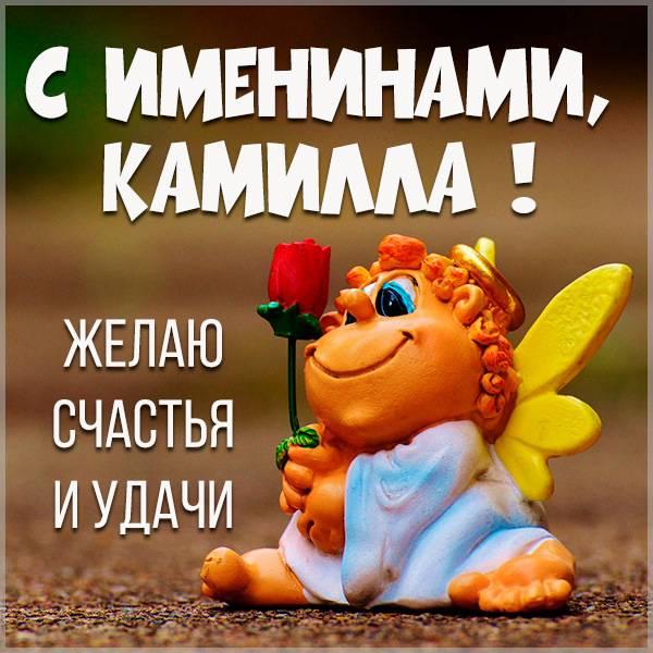 Красивая открытка на именины Камиллы - скачать бесплатно на otkrytkivsem.ru