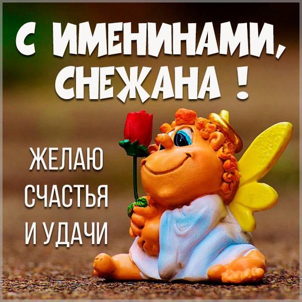 Красивая открытка на именины Снежаны - скачать бесплатно на otkrytkivsem.ru