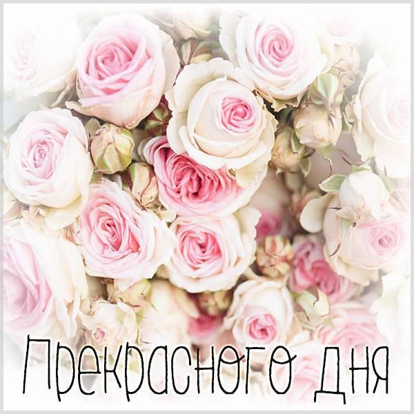 Красивая открытка прекрасного дня - скачать бесплатно на otkrytkivsem.ru
