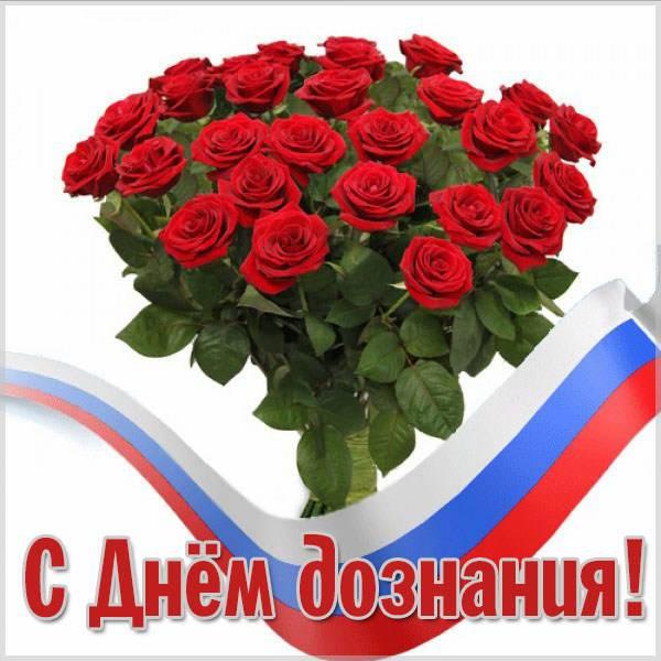 Красивая открытка с днем дознания - скачать бесплатно на otkrytkivsem.ru