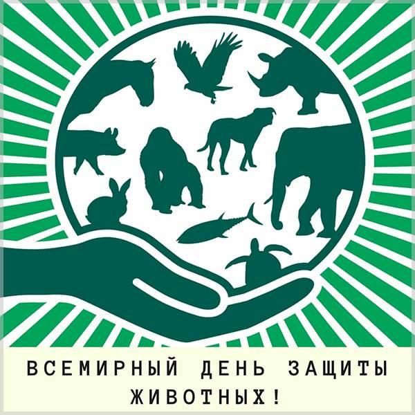Красивая открытка с Днем Защиты Животных - скачать бесплатно на otkrytkivsem.ru