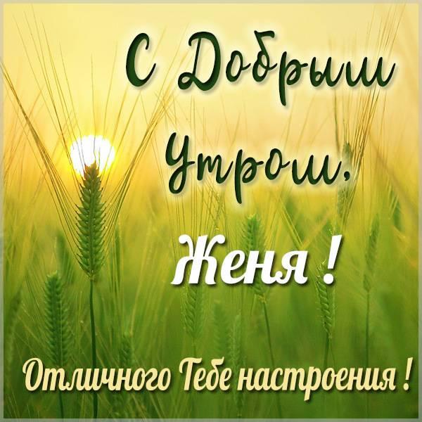 Красивая открытка с добрым утром Женя - скачать бесплатно на otkrytkivsem.ru