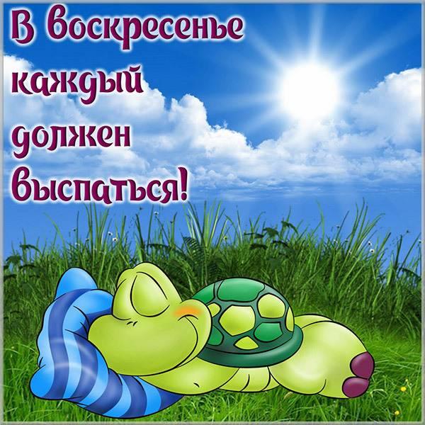 Красивая открытка с пожеланием хорошего воскресенья - скачать бесплатно на otkrytkivsem.ru
