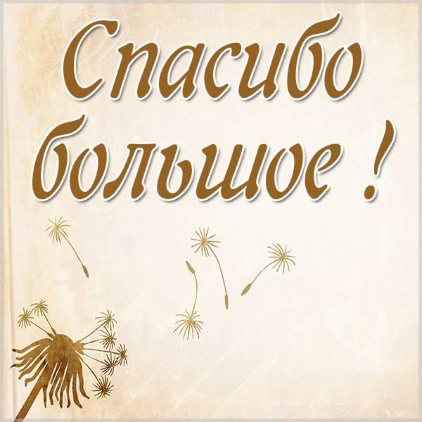 Красивая открытка спасибо большое - скачать бесплатно на otkrytkivsem.ru