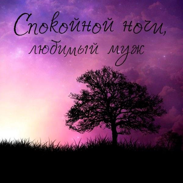 Красивая открытка спокойной ночи любимому мужу - скачать бесплатно на otkrytkivsem.ru