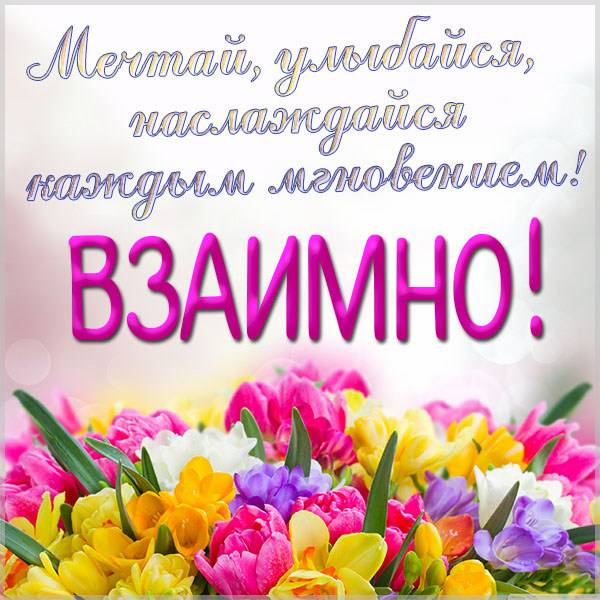 Красивая открытка взаимно - скачать бесплатно на otkrytkivsem.ru