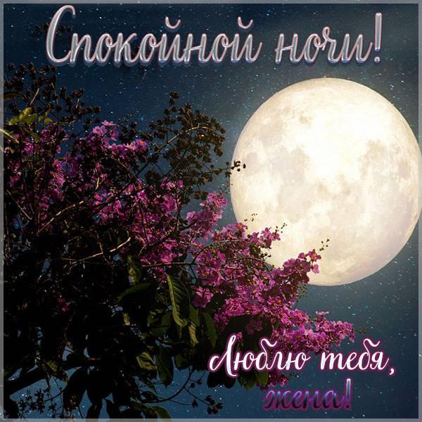 Красивая открытка жене от мужа спокойной ночи - скачать бесплатно на otkrytkivsem.ru