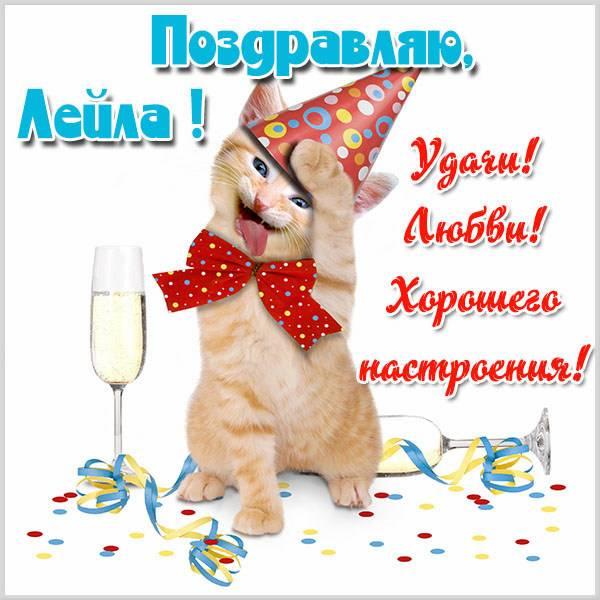 Красивая прикольная картинка с именем Лейла - скачать бесплатно на otkrytkivsem.ru