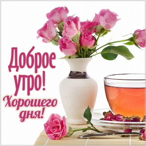 Красивая виртуальная картинка доброе утро хорошего дня - скачать бесплатно на otkrytkivsem.ru