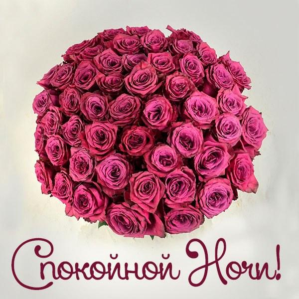 Красивое пожелание спокойной ночи девушке в открытке - скачать бесплатно на otkrytkivsem.ru