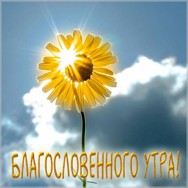 Летняя картинка благословенного утра - скачать бесплатно на otkrytkivsem.ru