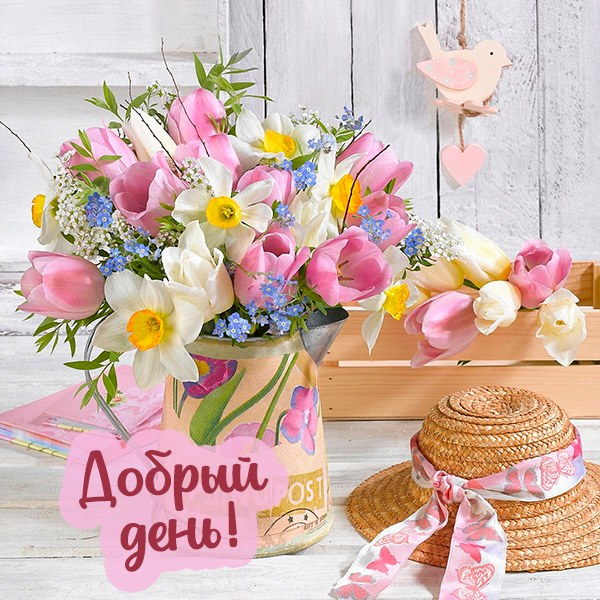 Летняя открытка добрый день красивая - скачать бесплатно на otkrytkivsem.ru