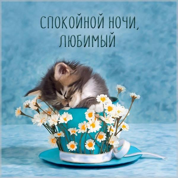 Необычная картинка спокойной ночи любимый прикольная - скачать бесплатно на otkrytkivsem.ru