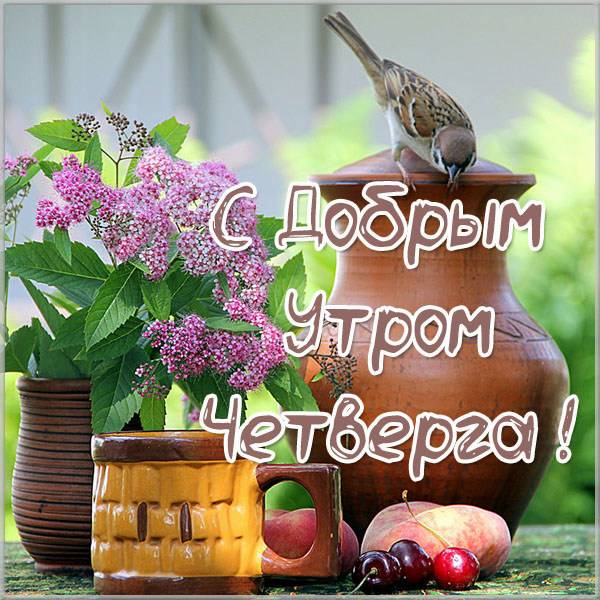 Необычная прикольная открытка с добрым утром четверга - скачать бесплатно на otkrytkivsem.ru
