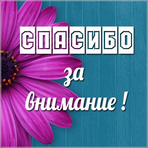 Окончание презентации спасибо за внимание в картинке - скачать бесплатно на otkrytkivsem.ru