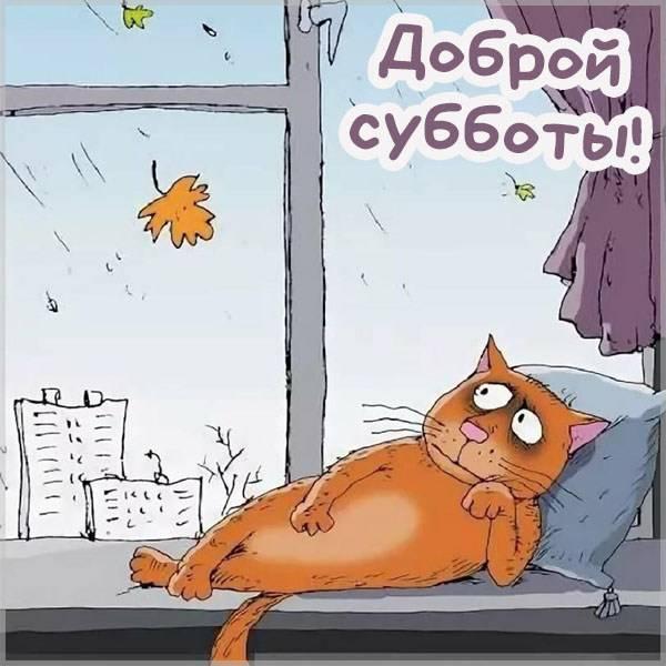 Осенняя картинка доброй субботы - скачать бесплатно на otkrytkivsem.ru