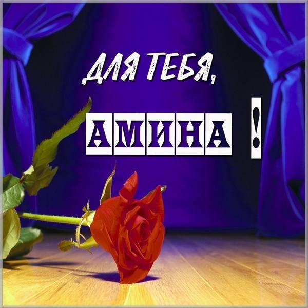 Открытка Амина это тебе - скачать бесплатно на otkrytkivsem.ru