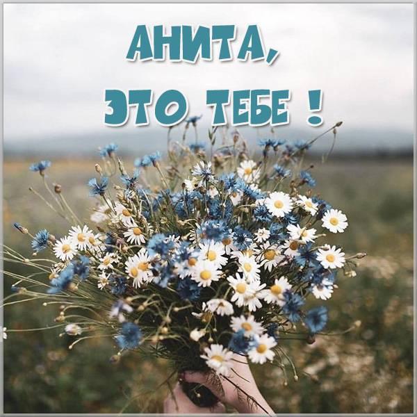 Открытка Анита это тебе - скачать бесплатно на otkrytkivsem.ru