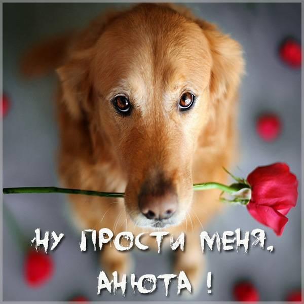 Открытка Анюта прости меня - скачать бесплатно на otkrytkivsem.ru
