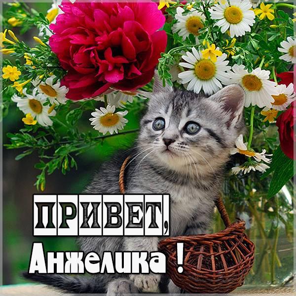 Открытка Анжелика привет - скачать бесплатно на otkrytkivsem.ru