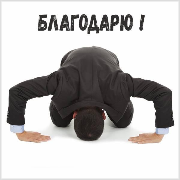 Открытка благодарю прикольная - скачать бесплатно на otkrytkivsem.ru