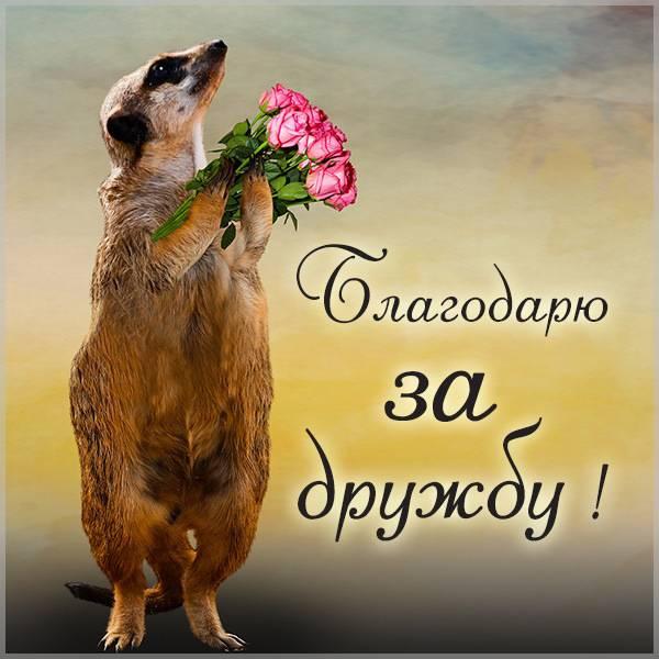Открытка благодарю за дружбу - скачать бесплатно на otkrytkivsem.ru