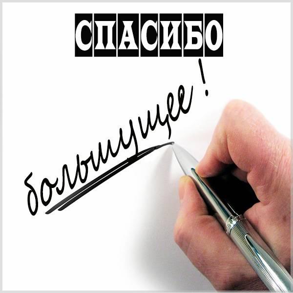Открытка большущее спасибо - скачать бесплатно на otkrytkivsem.ru