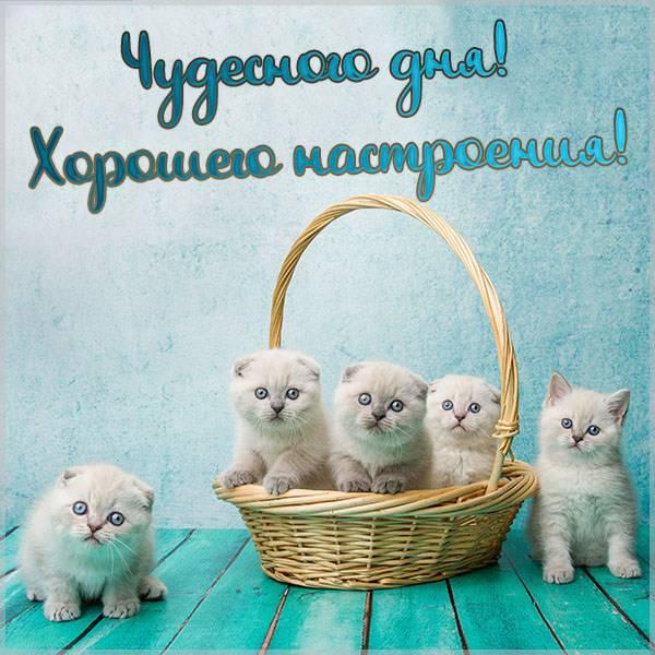 Открытка чудесного дня и хорошего настроения новая - скачать бесплатно на otkrytkivsem.ru