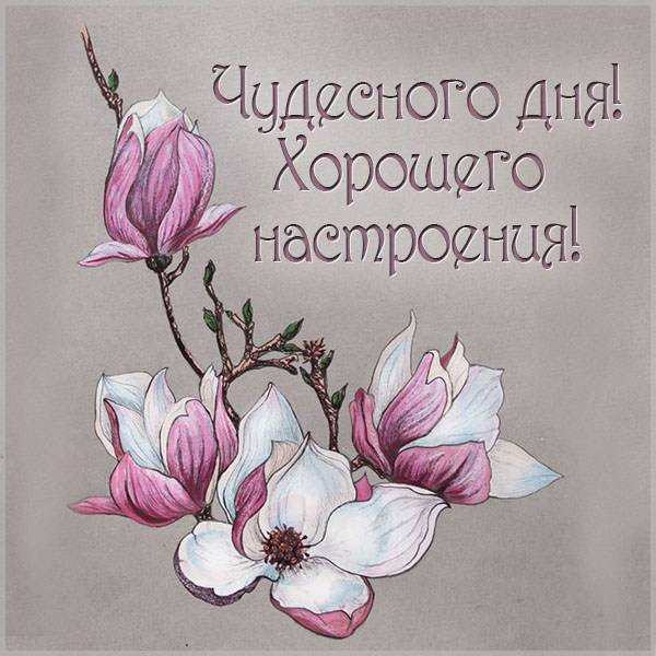 Открытка чудесного дня и хорошего настроения - скачать бесплатно на otkrytkivsem.ru