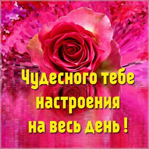 Открытка чудесного настроения на весь день - скачать бесплатно на otkrytkivsem.ru