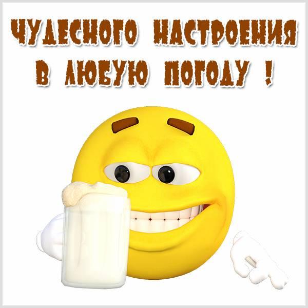 Открытка чудесного настроения в любую погоду - скачать бесплатно на otkrytkivsem.ru