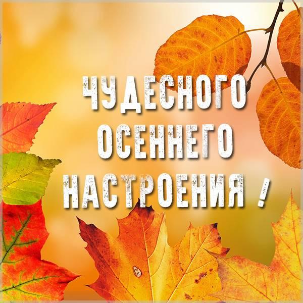Открытка чудесного осеннего настроения - скачать бесплатно на otkrytkivsem.ru