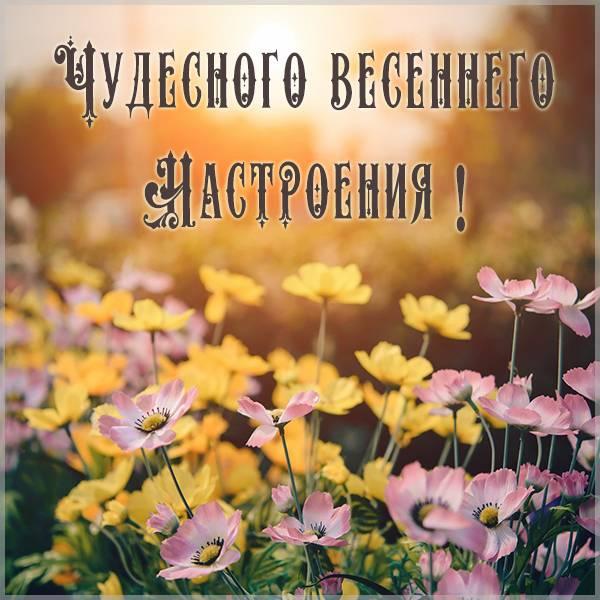 Открытка чудесного весеннего настроения - скачать бесплатно на otkrytkivsem.ru
