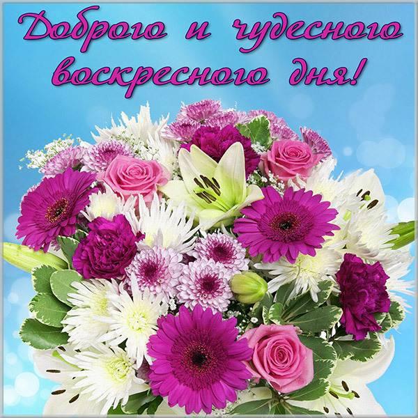 Открытка чудесного воскресного дня - скачать бесплатно на otkrytkivsem.ru