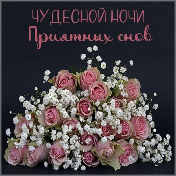 Открытка чудесной ночи приятных снов - скачать бесплатно на otkrytkivsem.ru