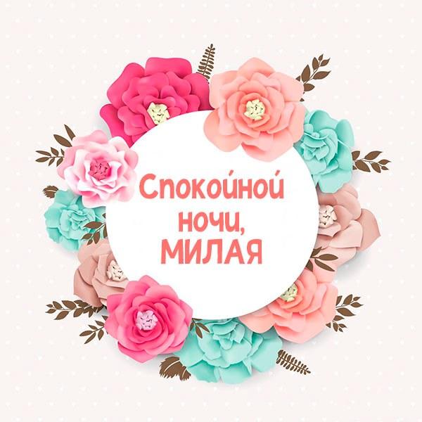 Открытка девушке спокойной ночи милая - скачать бесплатно на otkrytkivsem.ru